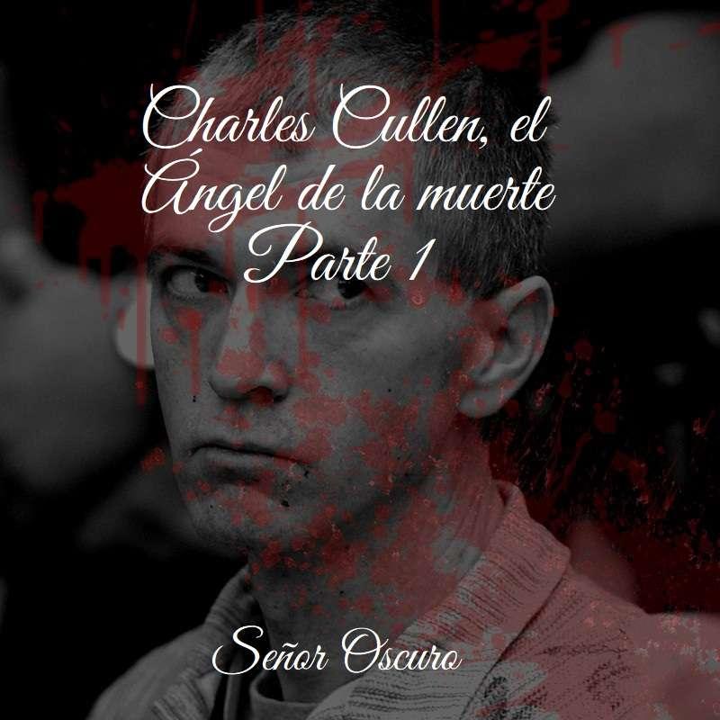 Charles Cullen, el Ángel de la muerte. Parte 1.