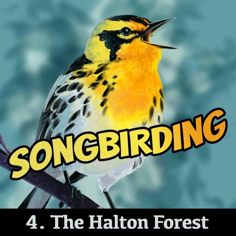 S4E4 - The Halton Forest