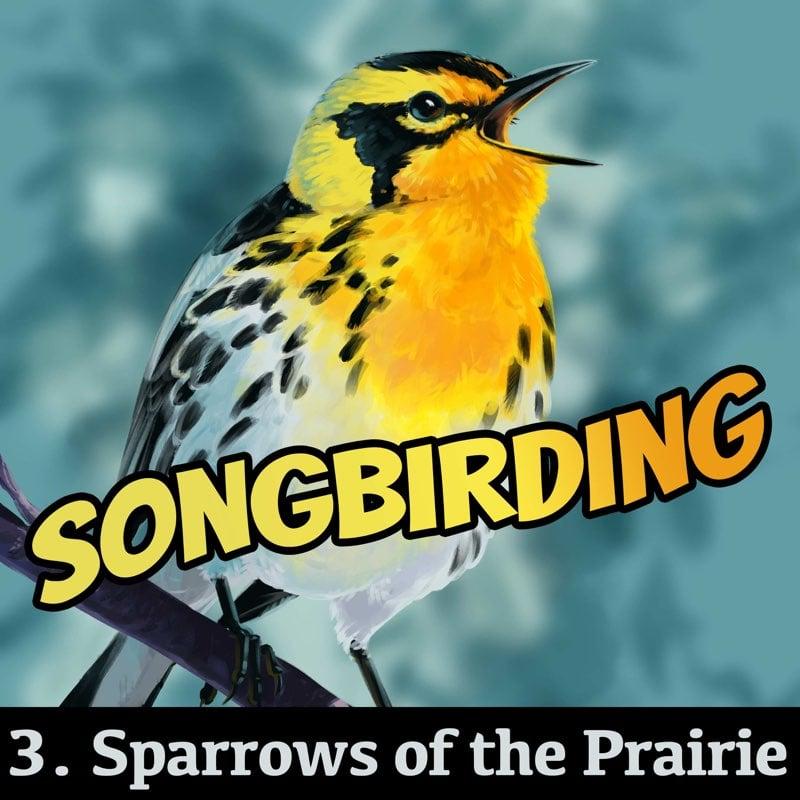 S4E3 - Sparrows of the Prairie