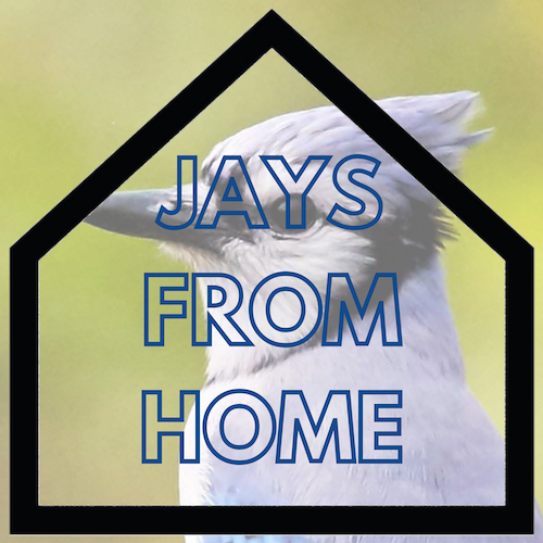 Jays From Home