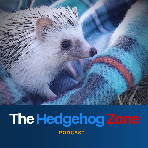 The Hedgehog Zone - The Sonic Podcast