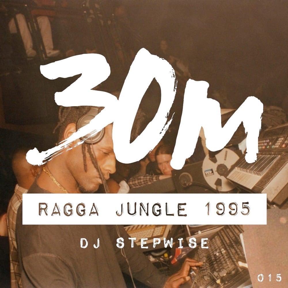 015: Ragga Jungle 1995 - DJ Stepwise (Oakland)